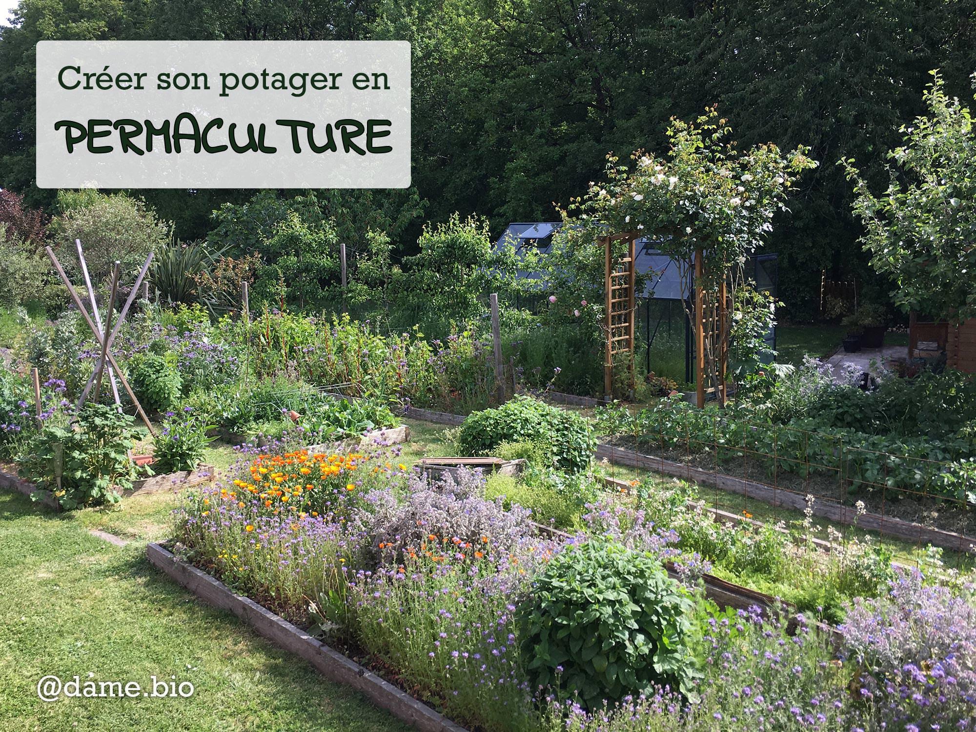 Mon potager en permaculture au printemps